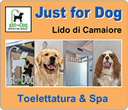 Just For Dog Wash & Wellness